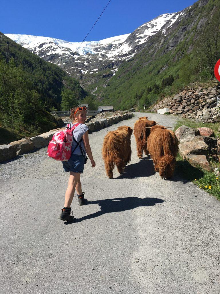 норвегия путешествие самостоятельно