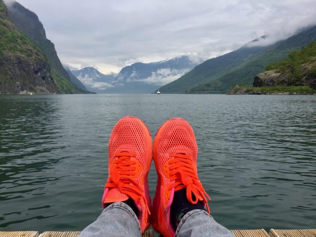 норвегия блог elekule