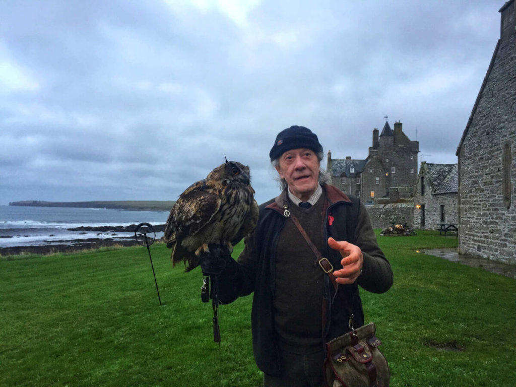 falconry in scotland