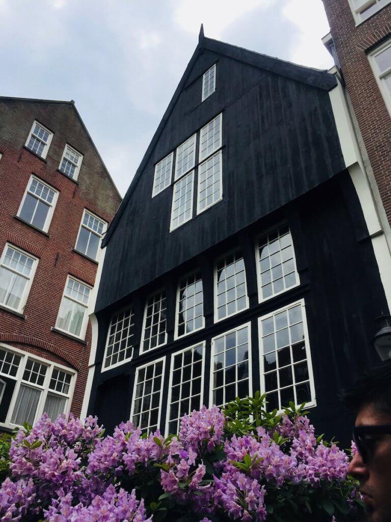 деревянный дом амстердам
