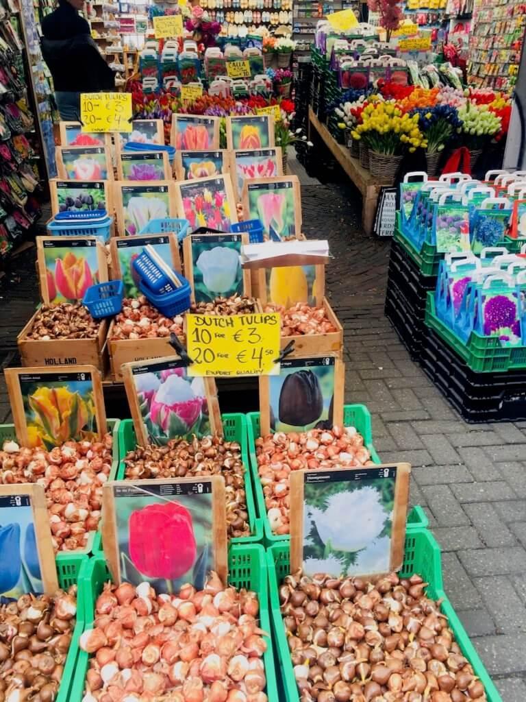 цветочный рынок амстсердам