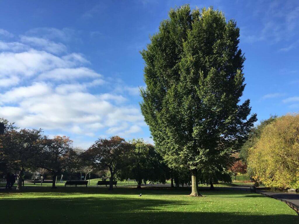 парки дублина